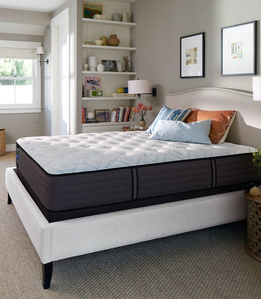 sealy traditional firm mattress